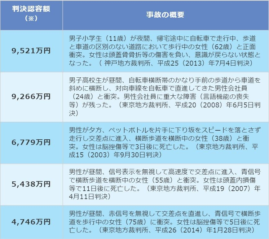 <事故判例 出典:一般社団法人 日本損害保険協会SONPO>
